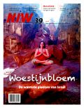 NIW_39_2013